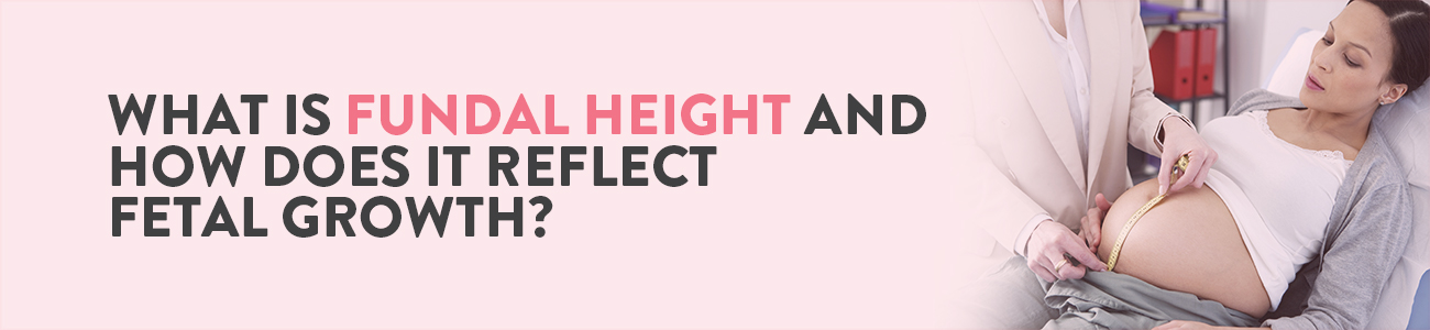 Fundal Height, Fundal Height in Pregnancy, Fundal Height measurement, Fundal Height Chart, Normal Fundal Height