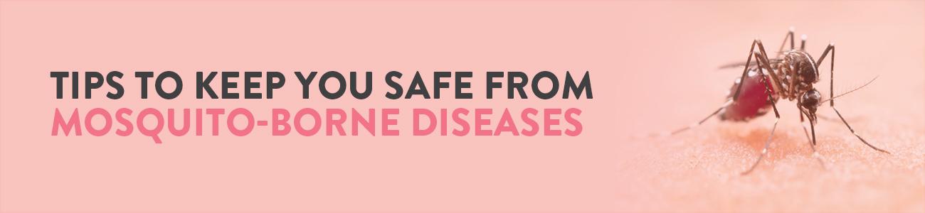 Mosquito borne disease, Dengue, Malaria, Chikungunya, Tips to prevent mosquito borne disease